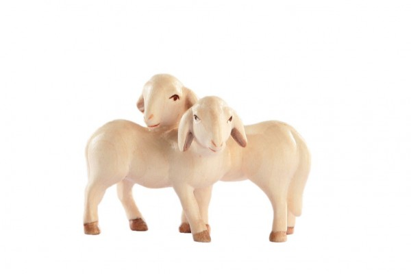 Lammgruppe